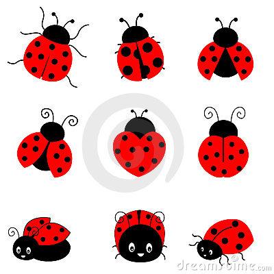 cute ladybug drawings clipart