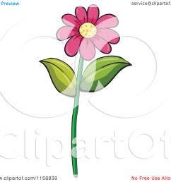 daisy flower clip art [ 1080 x 1024 Pixel ]