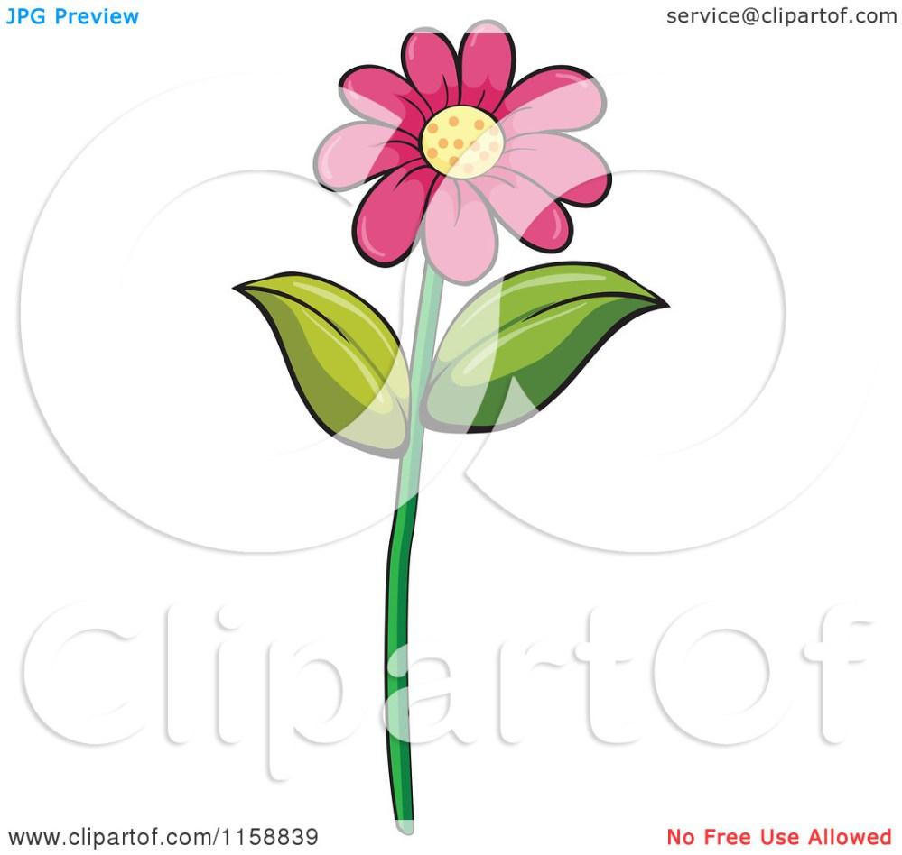 medium resolution of daisy flower clip art