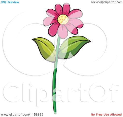 small resolution of daisy flower clip art
