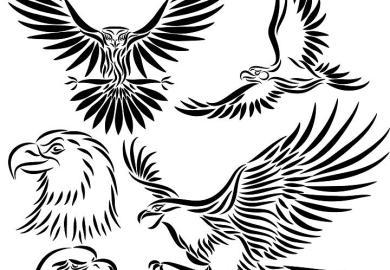 Eagle Design Tattoo