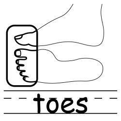 body clipart clip elbow toes parts coloring words cliparts basic face toe cartoon clipartpanda human exercise panda touching abcteach labeled