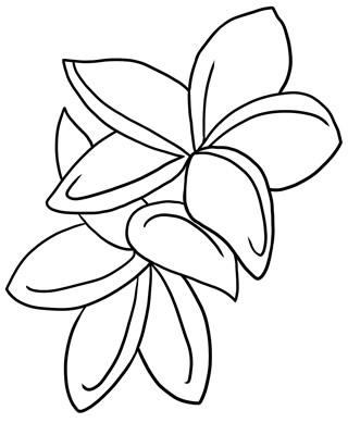 list of jungle flowers auto electrical wiring diagram Rheem Heat Pump Water Heater electric fan wire diagram for universal ih 1066 wiring diagram wiring diagram rheem water heaters model 81v52d citroen berlingo fuse box location