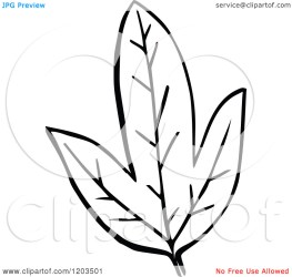 Printable Leaf Clipart Black And White