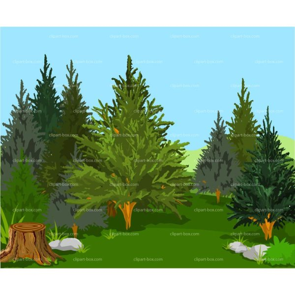 Pine Tree Forest Clip Art Free