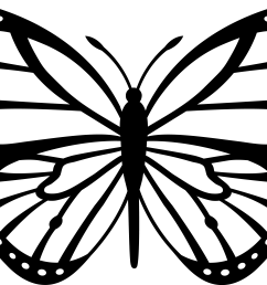 free butterfly clipart white clipart [ 5920 x 3982 Pixel ]