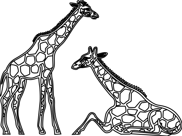 Giraffe Clipart Black And White Panda - Free
