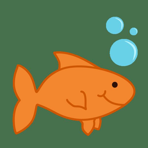 goldfish clipart panda