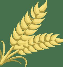 grain clipart [ 2475 x 2400 Pixel ]