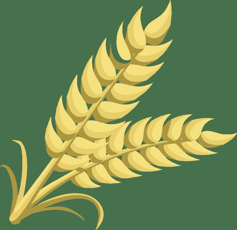 medium resolution of grain clipart