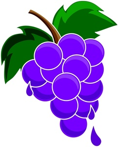grapes clipart black and white