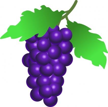 grapes clipart panda