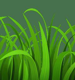 grass clipart [ 6000 x 2247 Pixel ]