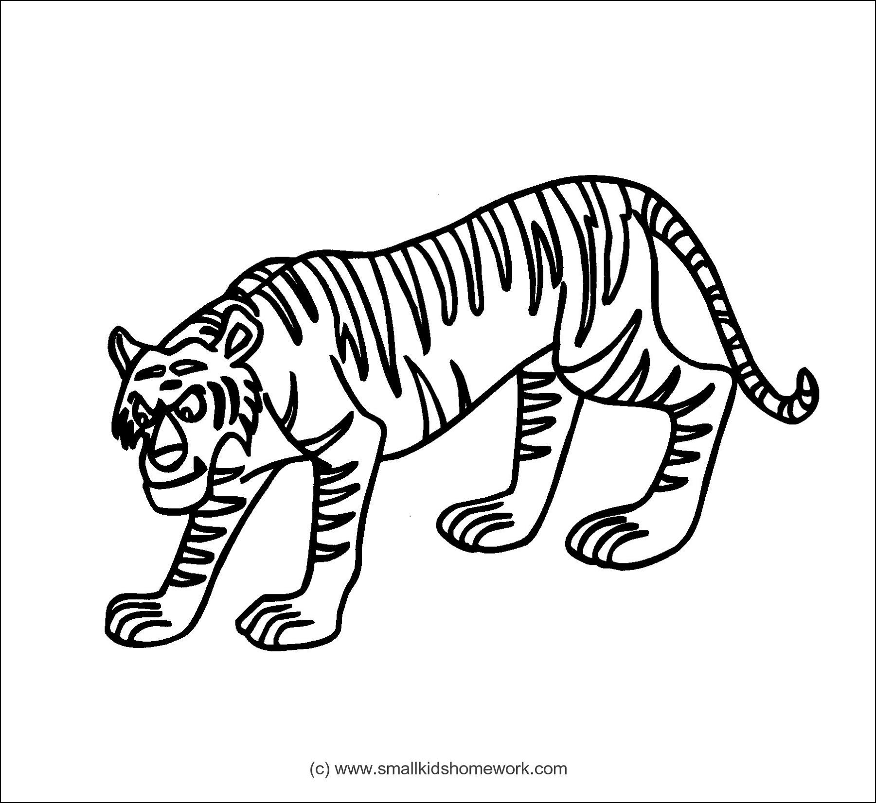 Tiger Clipart Panda