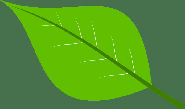 green leaves clipart panda