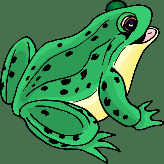 happy frog clip art clipart panda