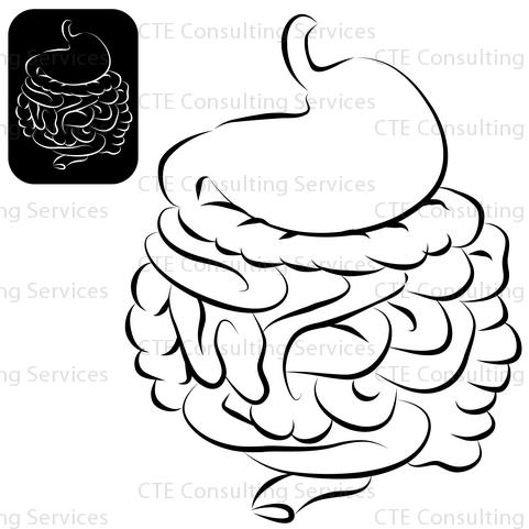 Diagram Crohns Digestive Diagram 122 54 69 Pro Hansafanprojekt De
