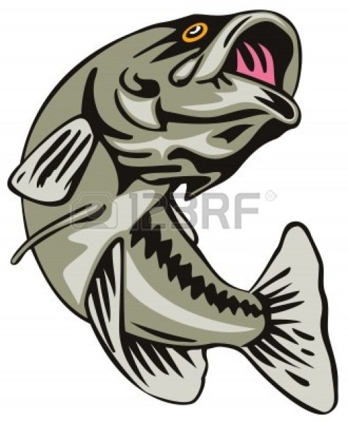 small resolution of jumping bass fish clip art