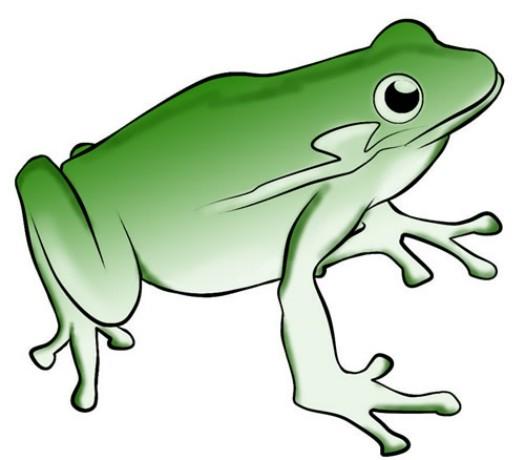 jumping frog clip art clipart