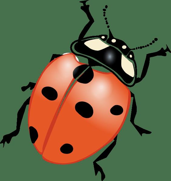 ladybug flying clipart