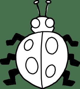 ladybug drawing black and white