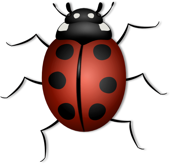 ladybug flying drawing clipart