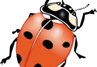 Free Ladybug Tattoo Designs