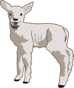lamb clipart free