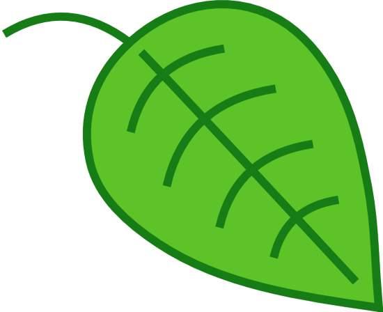 leaf clip art outline clipart