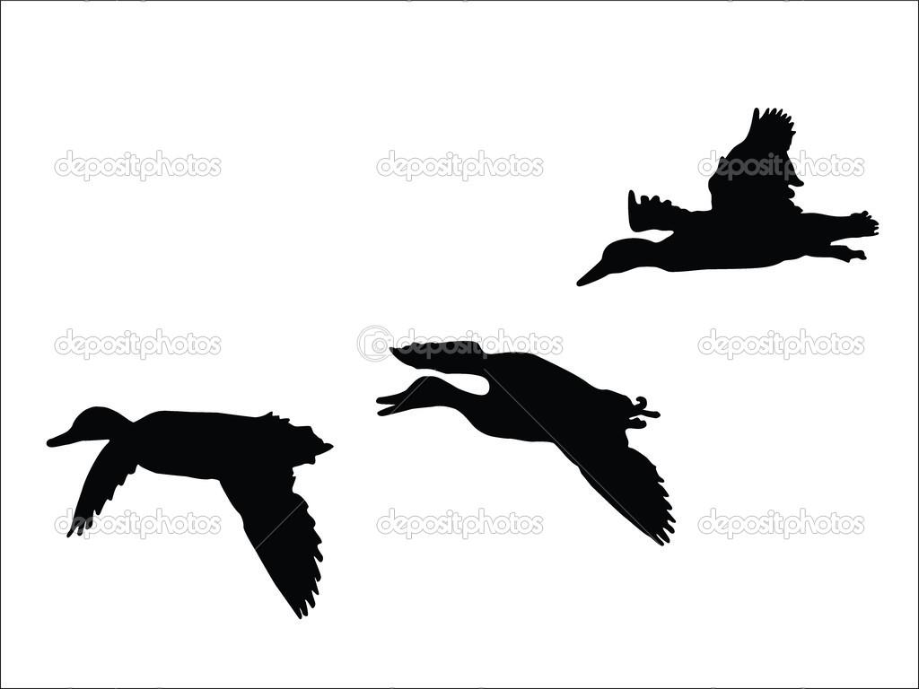 Flying Duck Silhouette Clipart Panda