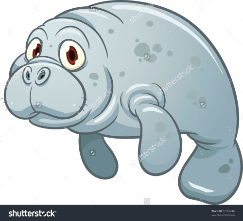 small resolution of manatee clipart