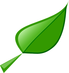 mango tree clip clipart clipartpanda leaf terms
