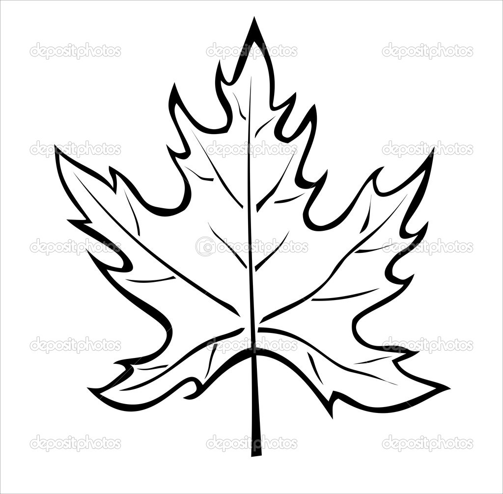 Maple Leaves Coloring Pages Clipart Panda