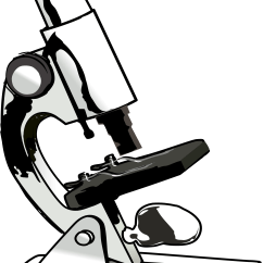 Animated Tree Diagram 1994 36v Club Car Wiring Microscope For Kids | Clipart Panda - Free Images