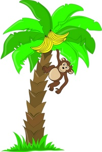monkey in tree clipart