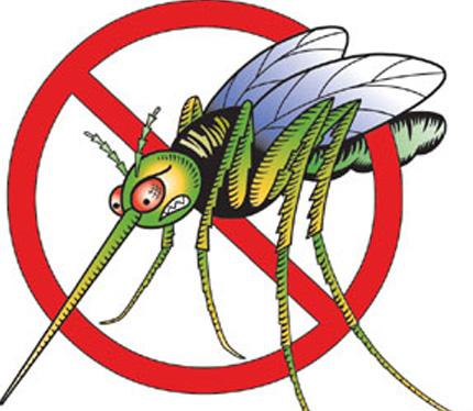 mosquito clip art clipart