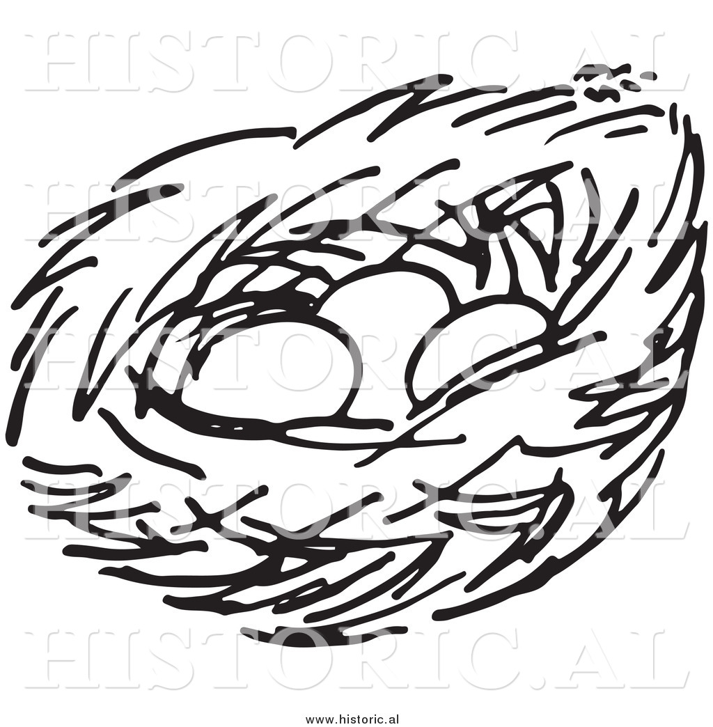 Nest With Eggs Clipart Clipart Panda