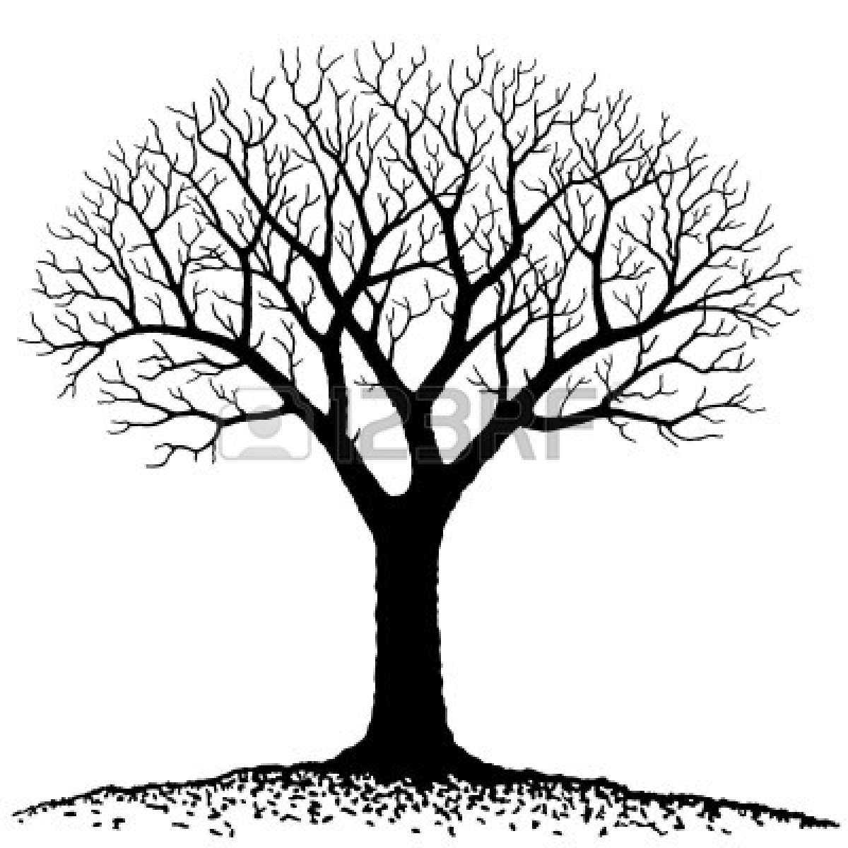 Oak Tree Simple Coloring Pages