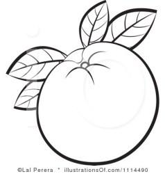 clipart orange oranges clip outline illustration clipartpanda cliparts royalty terms lal perera panda categories clipartmag