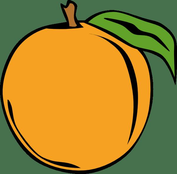 orange clipart black and white