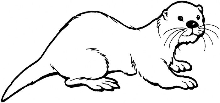 art otter otter coloring page  clipart panda  free