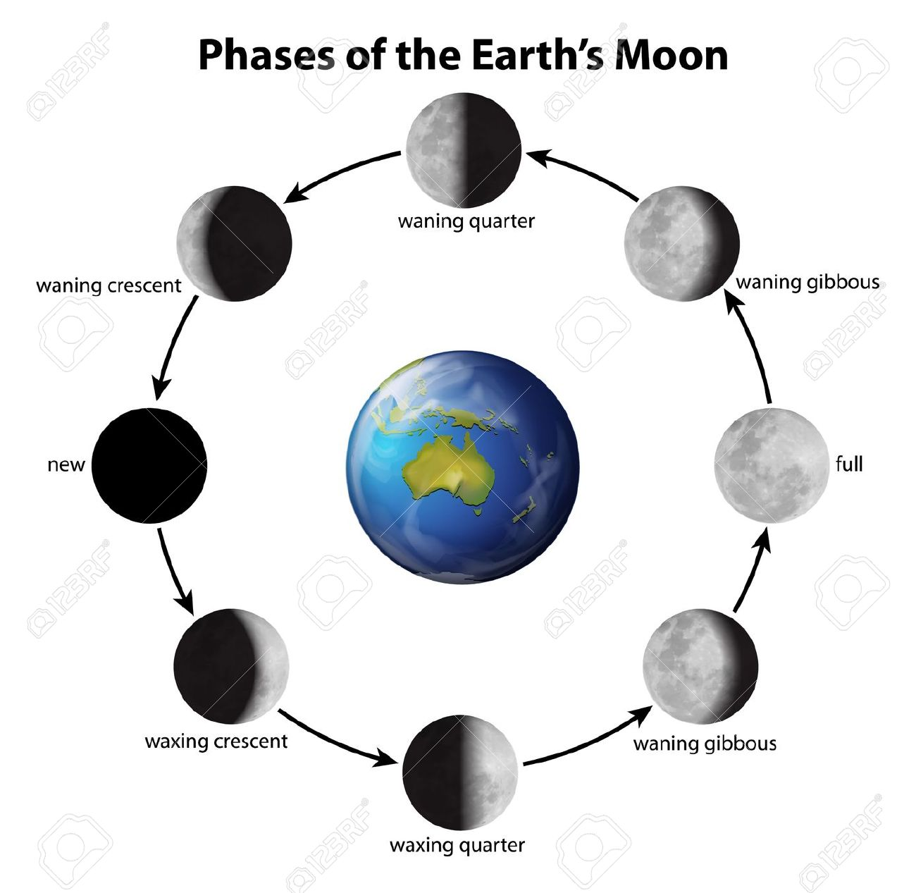 Phase Phases On The Moon As Clipart Panda