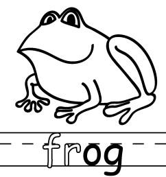 poison dart frog clip art [ 1200 x 1200 Pixel ]