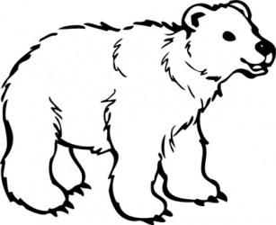 bear clip polar clipart bears categories printable