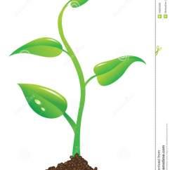 Plant Diagram Clip Art Alpha One Sterndrive Parts Growing Clipart Panda Free Images