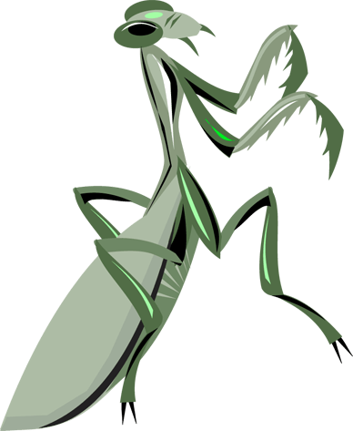 praying mantis sex and clipart