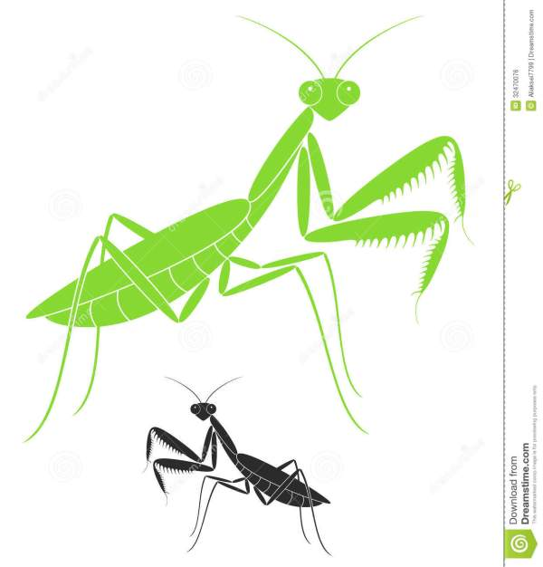 praying mantis clipart black