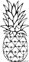 Pineapple+and+Fruits+to+Color Clipart Panda Free Clipart Images
