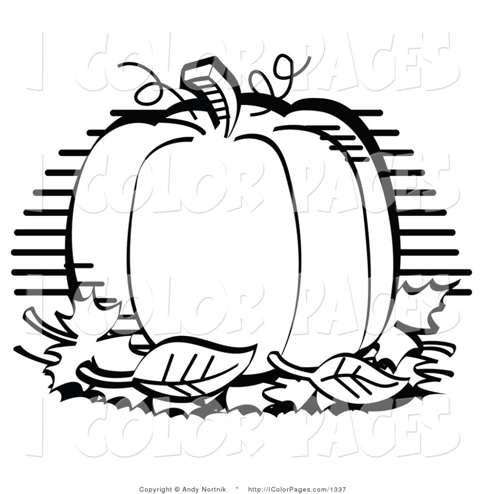 medium resolution of pumpkin clipart black and white