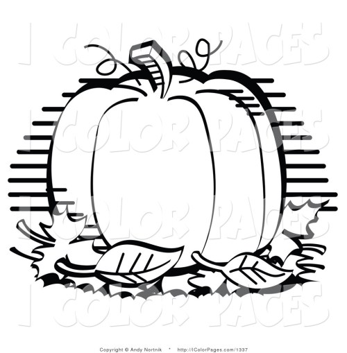 small resolution of pumpkin clipart black and white